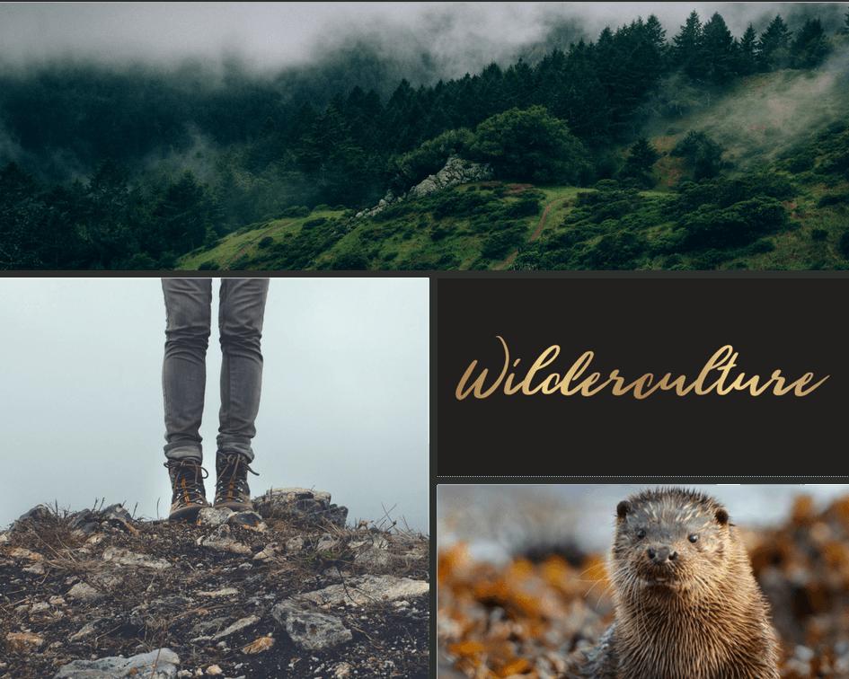 Wilderculture