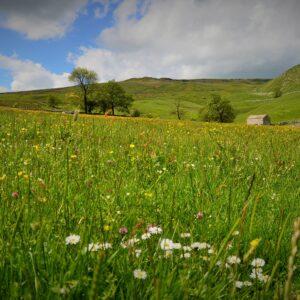 Hill Top Farm Malham