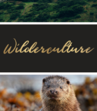 Group logo of Wilderculture