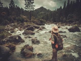 rewilding-experiences